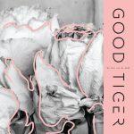 GOOD TIGER News/ Vidéo » Grip shoes»