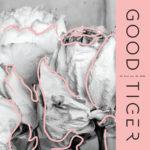 Good Tiger premieres new music video «Salt Of The Earth» via Alternative Press