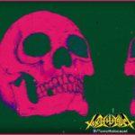 [guest] Toxic Holocaust, Sublime Cadaveric Decomposition – 11.08.2018 – Paris // concert Garmonbozia